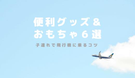 子連れで飛行機に乗るコツ 便利グッズ&おもちゃ6選