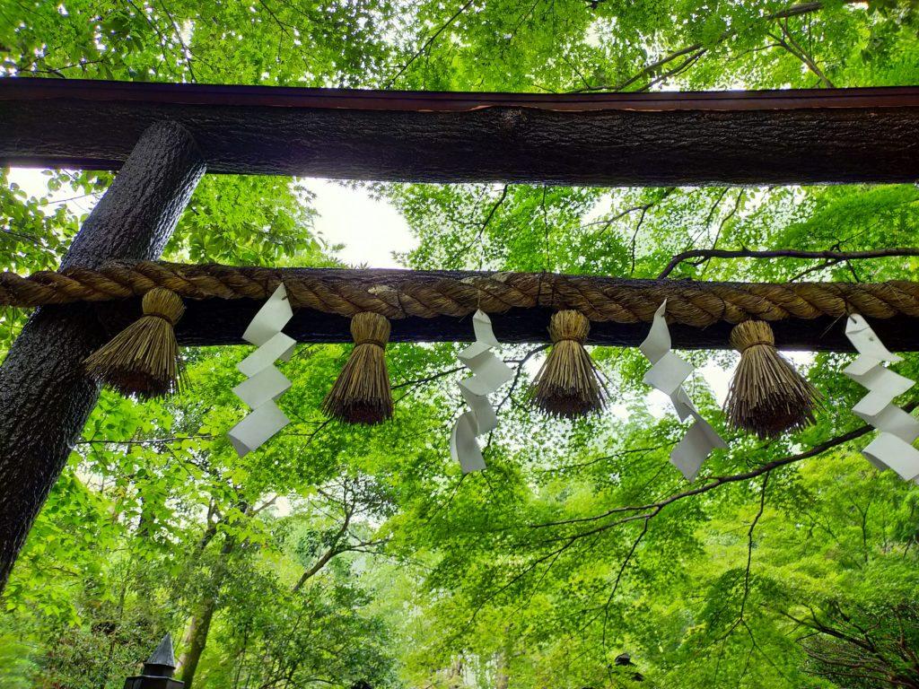 嵐山の野々宮神社鳥居