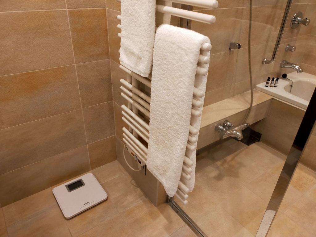 ハイアットリージェンシー箱根のバスルームは、シャワーブースと洗面所はセパレートされています